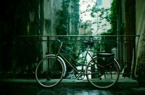 关于爱情的简单有哲理的句子带图片 不要贪心找到那个对的人就第一时间决定吧