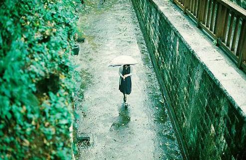 QQ空间最新雨天说说: 雨是揉碎的诗,诗是绵延的雨!