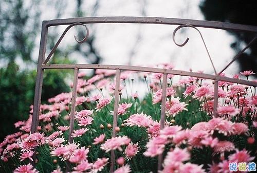 比较有诗意的爱情说说带点伤感 伤感句子合集能走入女孩子内心