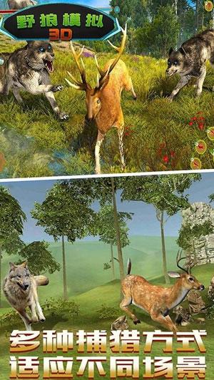 野狼生存模拟截图1