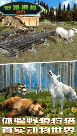 野狼生存模拟截图3