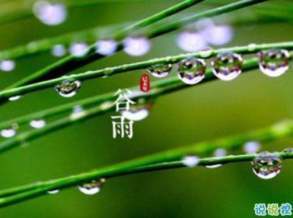 2019谷雨節氣朋友圈早安心語 谷雨美好心情說說