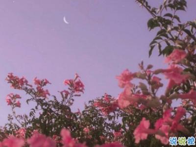 微信早安问候语简短带图片 2019早安暖心话十字以内12