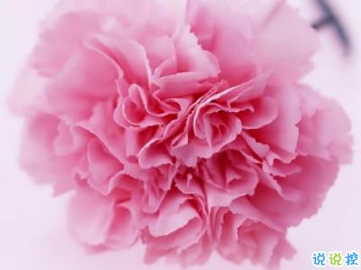 2019母亲节感恩祝福语带图片 母亲节的暖心话逗妈妈开心14