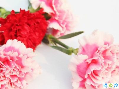 2019母亲节感恩祝福语带图片 母亲节的暖心话逗妈妈开心16