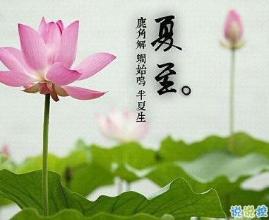 2019最新夏至祝福语致所有人 夏至到来愿你快乐一夏