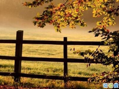 描写秋天的句子优美带图片 秋天到了微信心情说说7