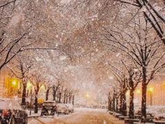 初雪表白文案打动人 适合告白的高级情话句子