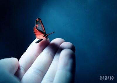 一个人的伤感说说:以前是喜欢一个人,现在是喜欢一个人